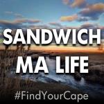 sandwich ma life