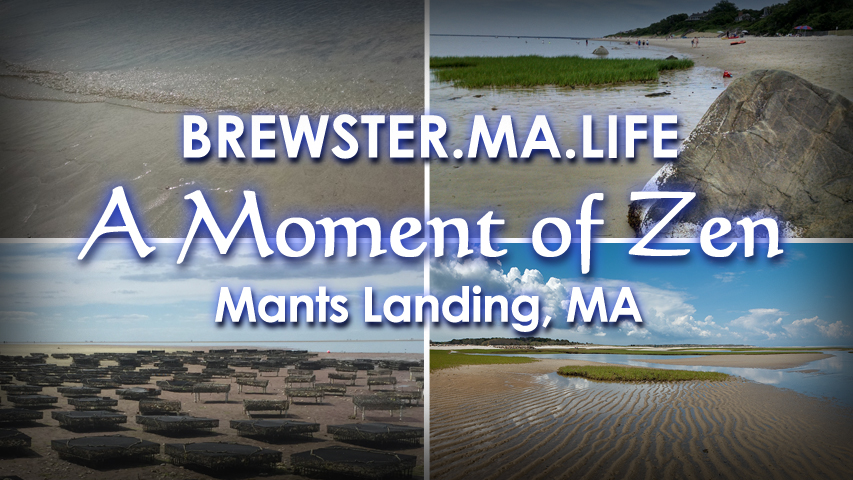 Mants Landing Cape Cod