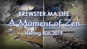 Paines Creek Herring Run - Brewster.MA.Life
